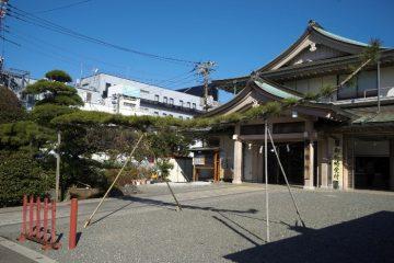 穴守稲荷神社(マツ)