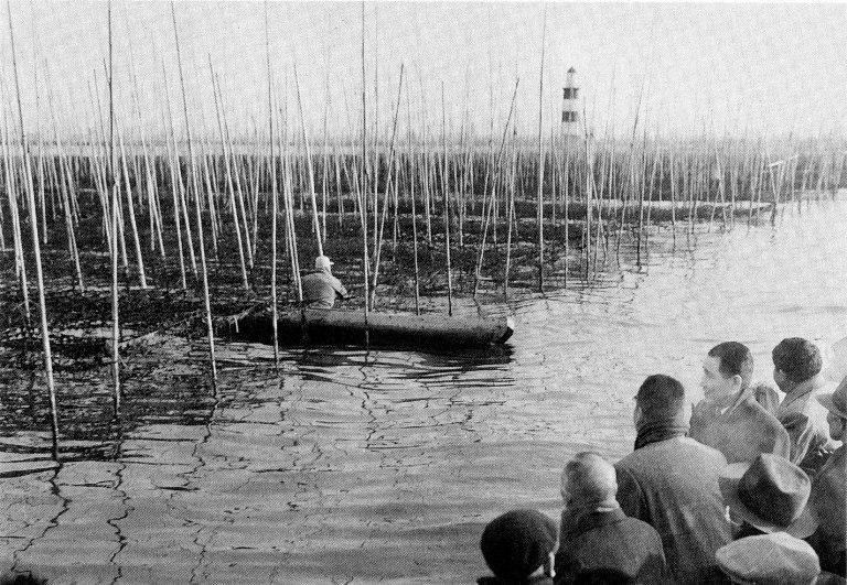 大森のノリ漁場昭和35年