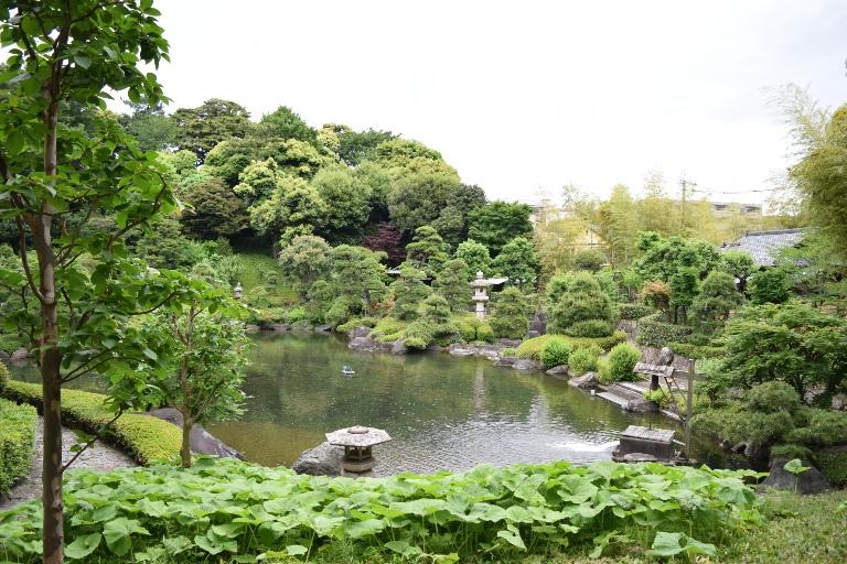 松濤園一般公開